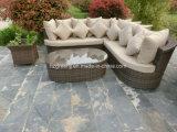 5 partes da mobília ajustada do Rattan da conversação do sofá do potenciômetro de flor