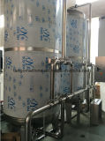 Sistema di trattamento del depuratore di acqua del RO di osmosi d'inversione