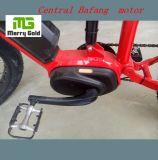完全な中断リチウム電池の電気バイク