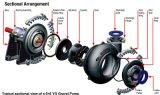 Horizontale Sandkies-Pumpe angetrieben durch Elektromotor