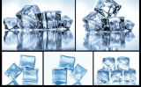 Générateur de glace de cube 81kg/24h avec des certificats de Ce/ETL