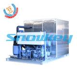 Macchina di fabbricazione di ghiaccio calda del piatto di vendita 10t