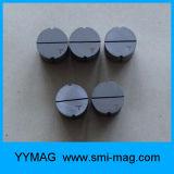 Imán sinterizado de la aleación de acero precisa a medida para Meter
