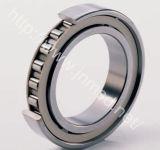 Marca de fábrica de Msdb, rodamiento rodante, rodamiento de rodillos cilíndrico (NU217ETN1)