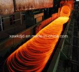 Colocación de la pista para la fabricación de Rod de alambre