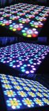 Portable programable LED Dance Floor de Digitaces del LED del baile de la etapa de Dance Floor del banquete de boda portable de la visualización