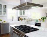 Jogos completos modernos dos gabinetes de cozinha