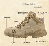 Chaussures inférieures de vente chaudes pour des butoirs