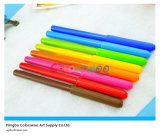 12 PCS Classic Round Cap Water Color Pen für Kids und Students