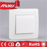 Viko vorbildlicher hölzerner europäischer CER Beleuchtung-Wand-Schalter (N-LK1B)