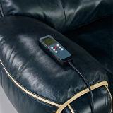 كهربائيّة [ركلينر] جلد أريكة (638#)