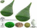 100% طبيعيّة نبات [فرا] هلام تجمّد - ينشّف مسحوق