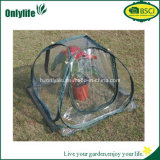 Serre chaude transparente pliable moyenne de PVC d'usine de jardin de taille d'Onlylife