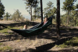 Camping, Backpacking, Kayaking & Travel를 위한 해먹 Goodwin Double - Portable Hammock Ideal