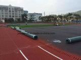 De Fabrikant van Guangzhou van Diverse Oppervlakten van de Renbaan