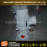 Pompe de gavage centrifuge verticale de pipe