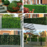 Decorativo exterior Artificial Boj Coberturas Fence