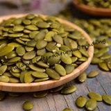 Стержени семян тыквы кожи Shine китайца с высоким качеством AA