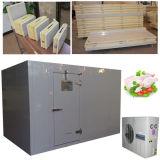 Stanza fredda personalizzata del congelatore del poliuretano con il portello Automatico-Closing della cerniera