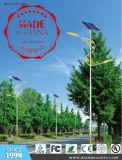 Les fournisseurs audités ont recommandé le réverbère solaire de LED