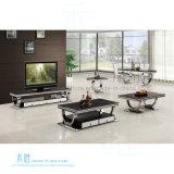 Tavolino da salotto moderno dell'acciaio inossidabile del salone (HW-1390T)
