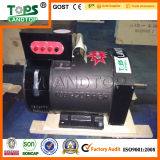 Vendita Brush Alternator di LANDTOP Hot