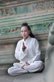 Habillement oblique d'exercices de matin de collier du ressort des femmes de Chi de Tai de Taoism et du lin textile d'été