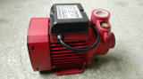 (OIN 9001 de la CE) pompe à l'eau 0.5HP Qb60 pour l'eau de pompe