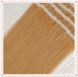 Indisches Remy Tape in Hair PU Skin Weft