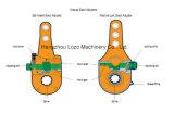 Régleur lâche manuel avec la norme d'OEM (LZ1010-LW)