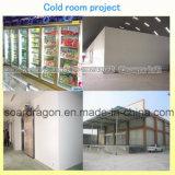 Chambre froide assemblée fendue d'élément de réfrigération avec les panneaux à haute densité