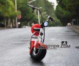 مدينة حركية [ستكك] [800و] كثّ مكشوف بالغ كهربائيّة [سكوتر] 2 عجلات درّاجة ناريّة كهربائيّة
