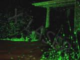 Laser verde Pointers, laser Lighting, luci laser di Outdoor di Cheap da vendere