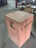 Plumeur de clavette d'acier inoxydable (GRT-N60)