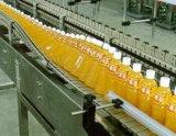 2t/H Complete Fruit Production Line