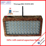 165W가 Gip WiFi 통제 4 채널 통신로 지능적인 LED 수족관에 의하여 점화한다