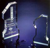 Premio di cristallo all'ingrosso K9