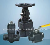 Alles Kinds von Forged Steel Valves