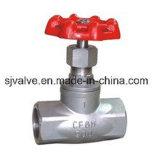 L'acciaio inossidabile quota la valvola di globo J11W-2