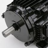 Motor trifásico 0.75kw da qualidade superior para o ventilador axial ao ar livre