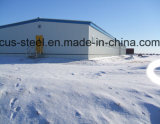 Almacén de la estructura de acero del diseño del taller/de la construcción de la estructura de acero
