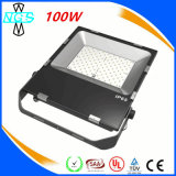 Landscapeの屋外の庭Lamp Waterproof 100W LED Flood Light