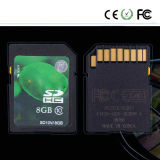 OEM High Speed 8GB 16GB 32GB Digital Camera BR Card (Class 10)