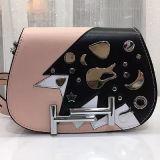 충돌 작은 어깨에 매는 가방 장식용 목을 박은 디자이너 핸드백 Emg4682를 착색하십시오