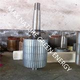 Генератор AC постоянного магнита трехфазный для вертикальной ветротурбины