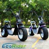 Ecorider 1200W 60Vの大人のための電気スクーター都市ココヤシ60-80km Harleyの電気スクーター