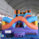 Castelo colorido inflável LG9047 da corrediça do projeto da água dos Cocos