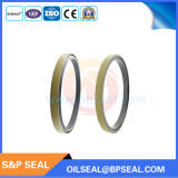 Labyrinth-Öl Seal/127*160*15.5/17.5 der Kassetten-Oilseal/