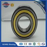 Rolamento de rolo de Cylindical da alta qualidade de SKF (NJ2204EC)