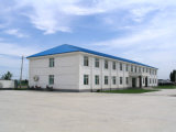 Bâtiment scolaire de structure de /Steel de fournisseurs et de constructeurs de structure métallique